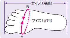 ワイズの測定方法